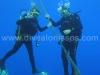 Scuba Diving Fun TImes