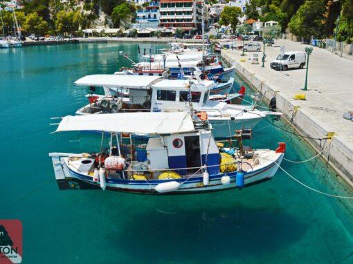 Patitiri Boats